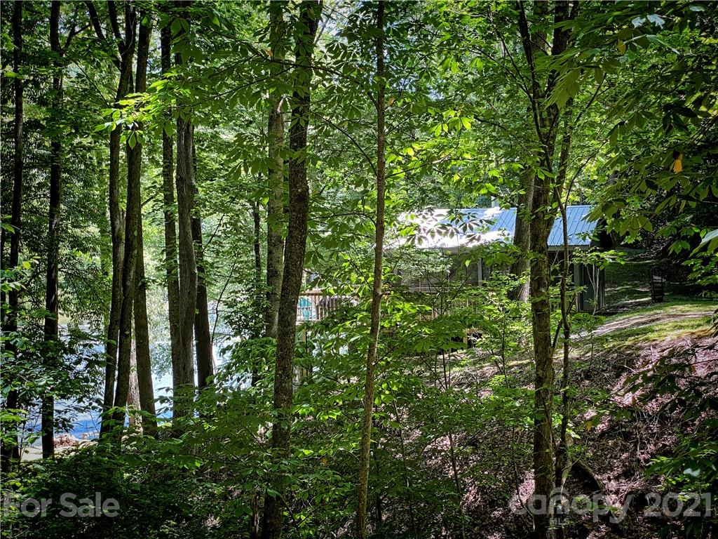 2736 White Oak Flats Road Property Photo 34