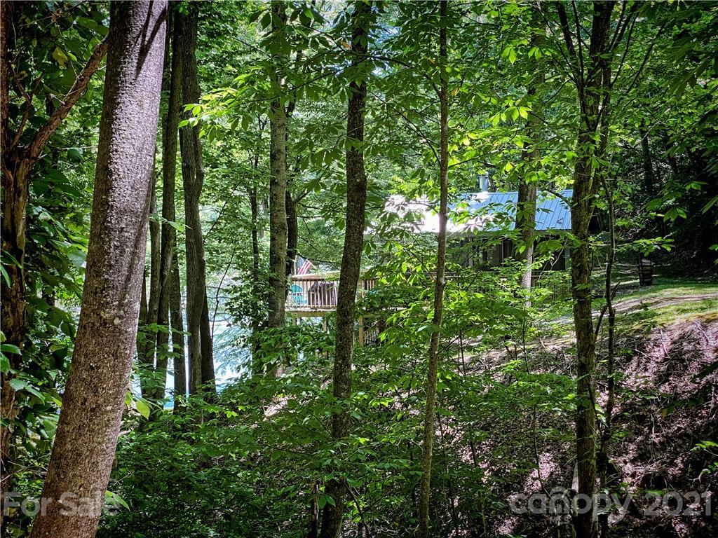 2736 White Oak Flats Road Property Photo 35