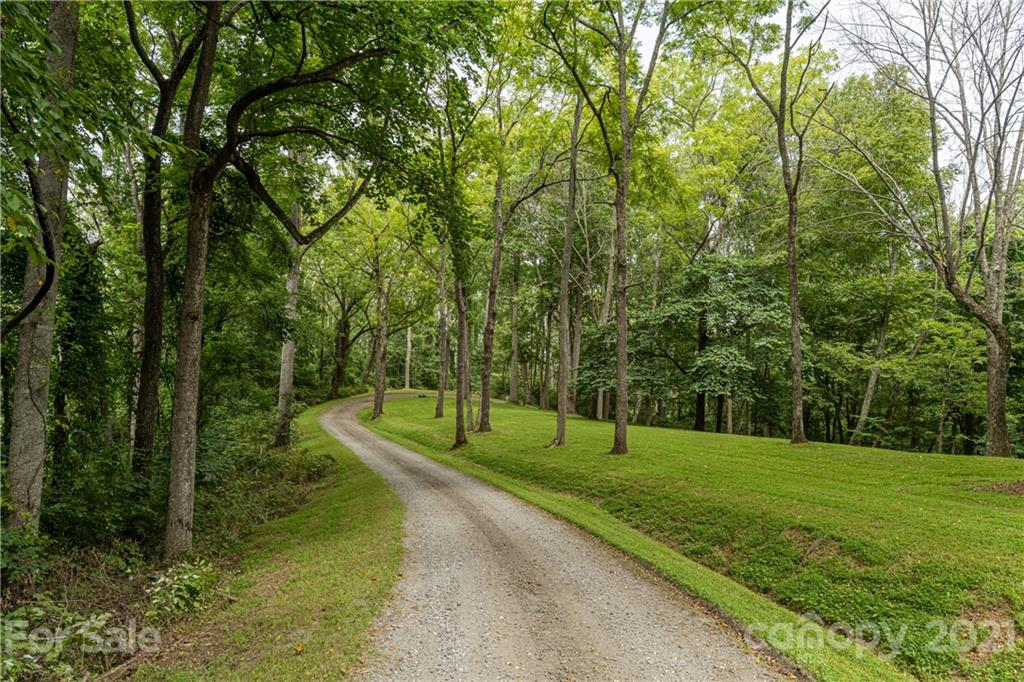 234 Hanlon Mountain Road Property Photo 9