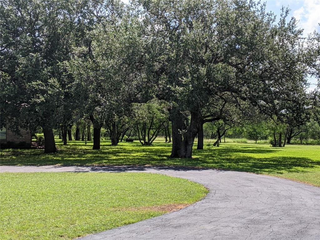 1104 Fm 3162 Property Photo 37