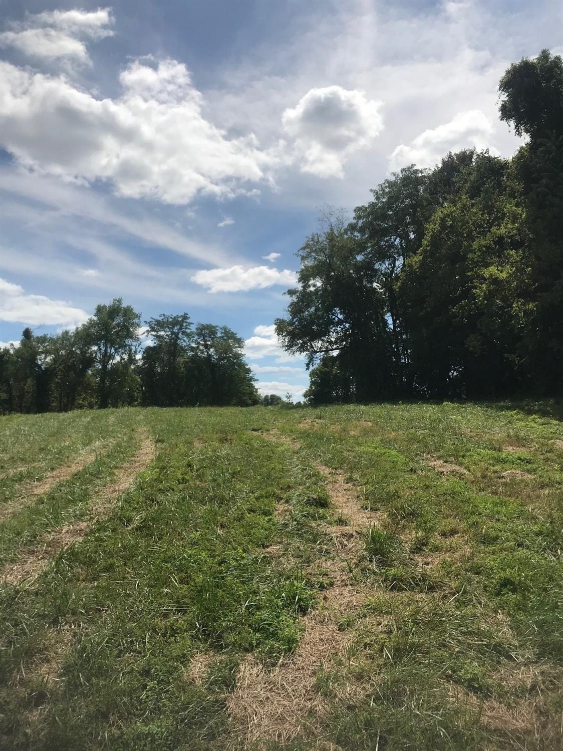 1217 Twelve Mile Road Property Photo