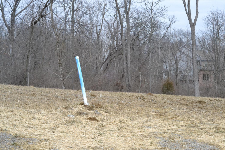 3557 Martha Ann Way Property Photo