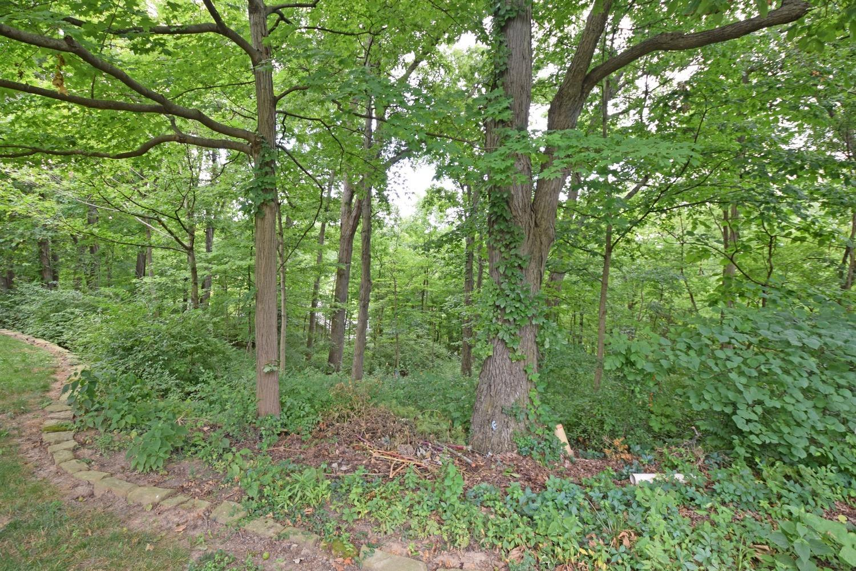 3817 Chimney Hill Drive Property Photo