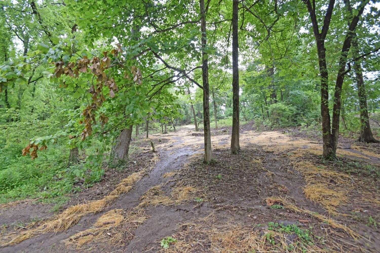 27 Burley Hills Drive Property Photo
