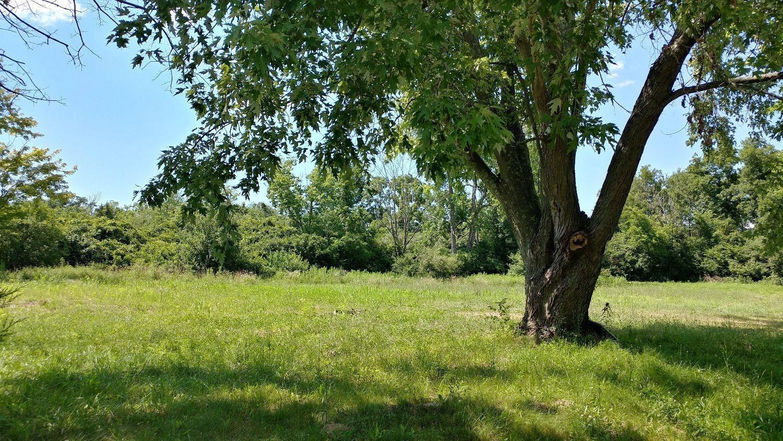 4728 Nichols Road Property Photo