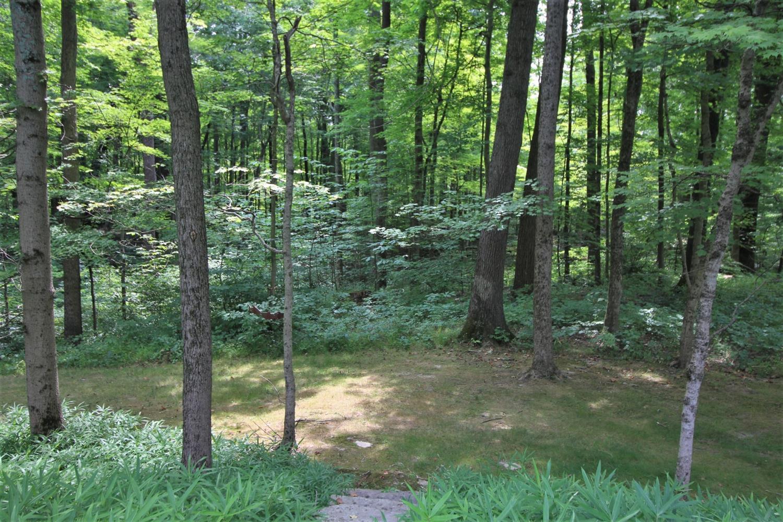 9550 Tall Trail Property Photo 41