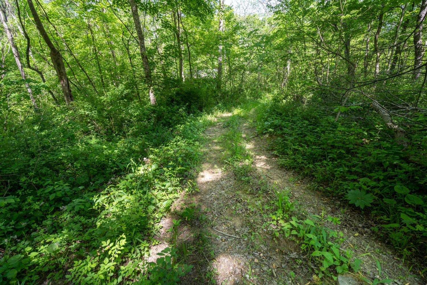 13761 Fort Hill Road Property Photo