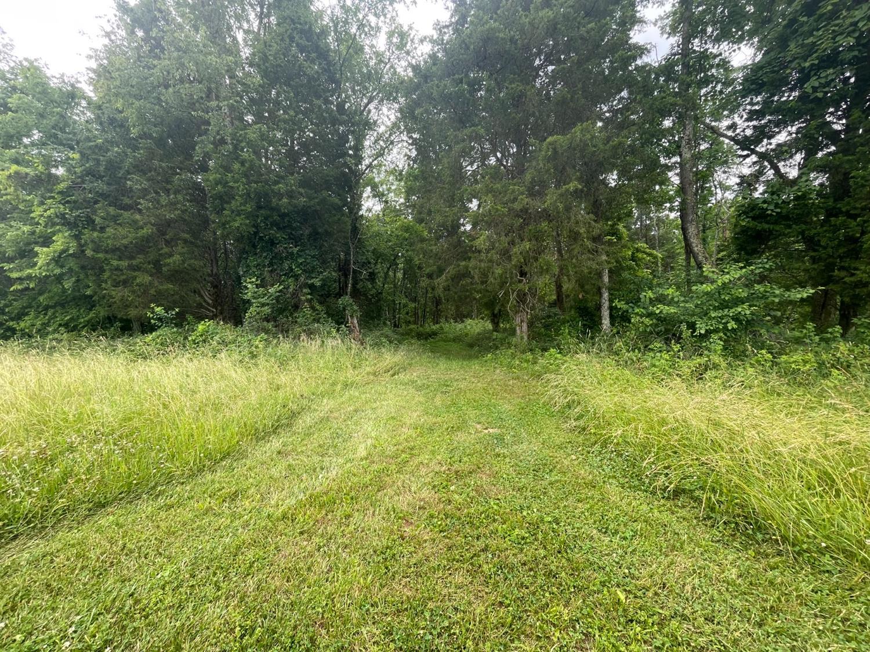0 Oatman Hill Road Property Photo 7