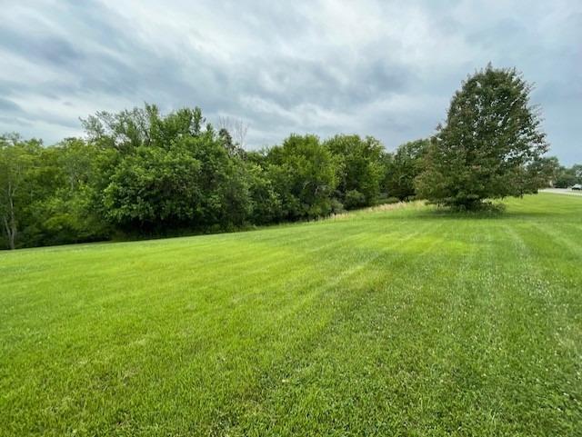 0 Briarwood Drive Property Photo
