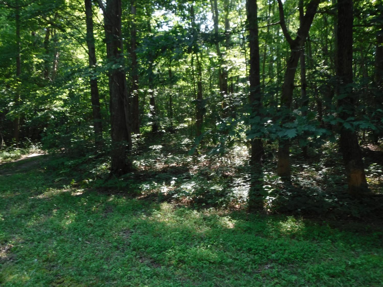 4531 Milburn Road Property Photo