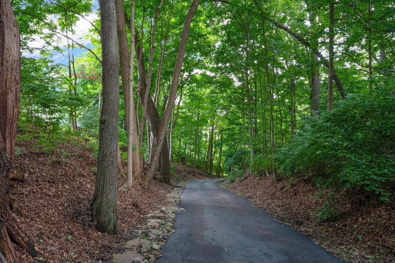 960 Walnut Street Property Photo 2