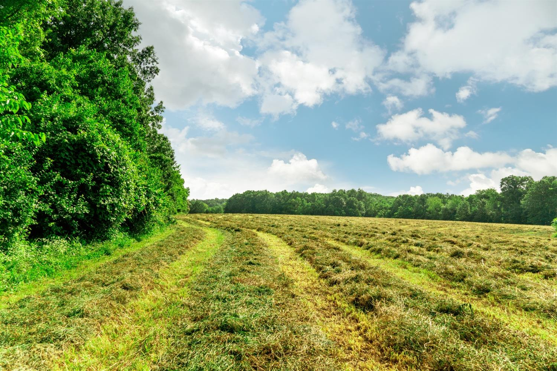 0 Rice Drive Property Photo 1