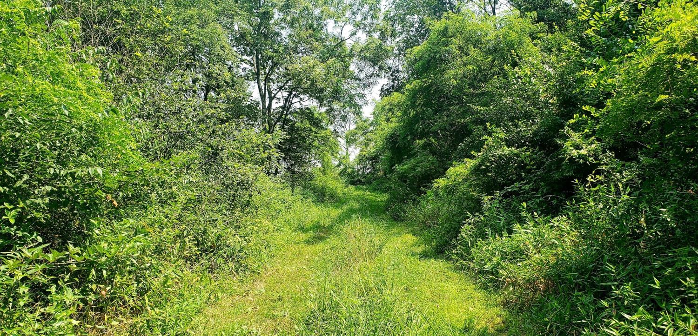 2863 Bethlehem Road Property Photo 8