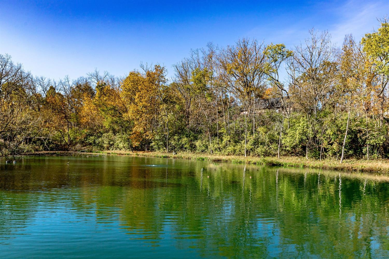 5335 Lakefront Drive Property Photo 9