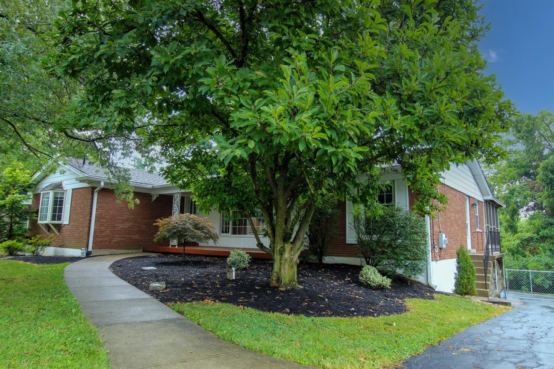 1007 Pineknot Drive Property Photo