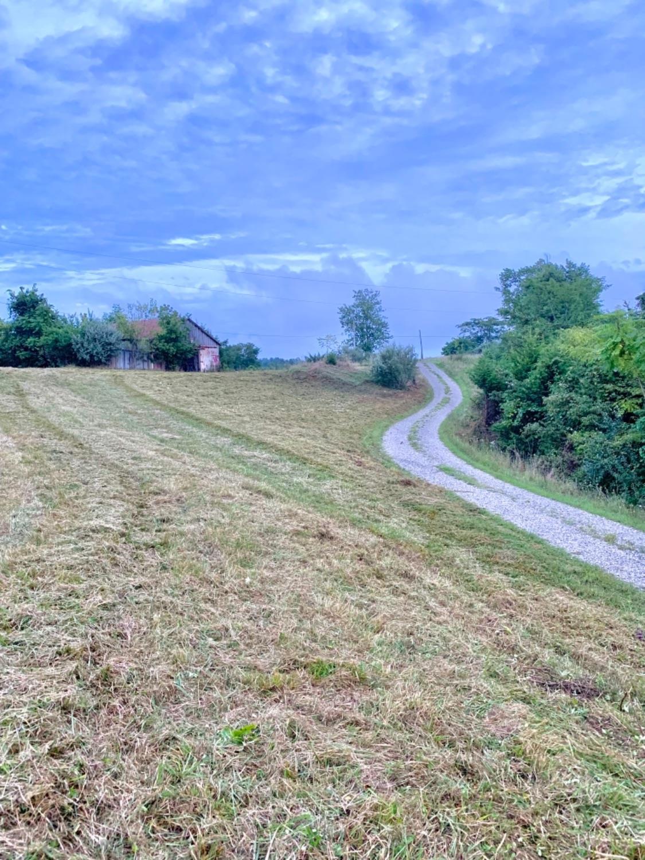 0 Landon Lane Property Photo