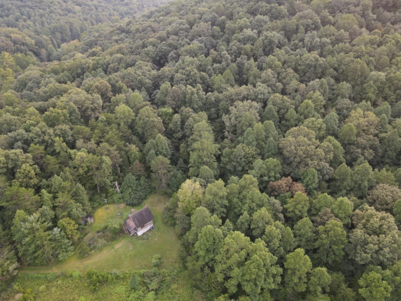 351 Pauline Miller Road Property Photo