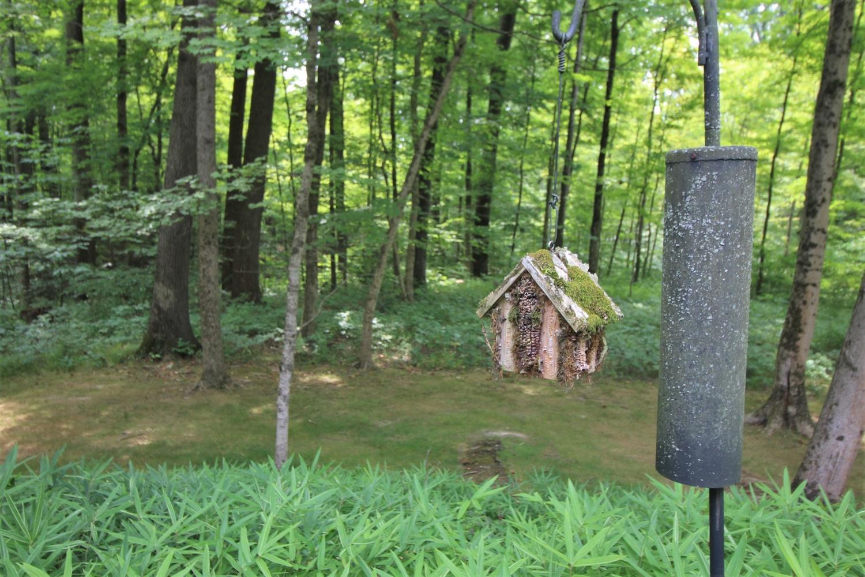 9550 Tall Trail Property Photo 37