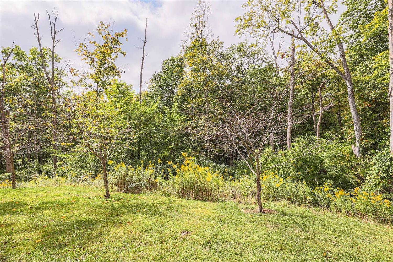 6225 Hawk Ridge Lane Property Photo 34