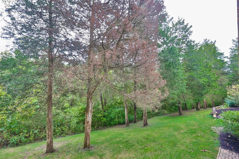 570 Four Mile Road Property Photo 30