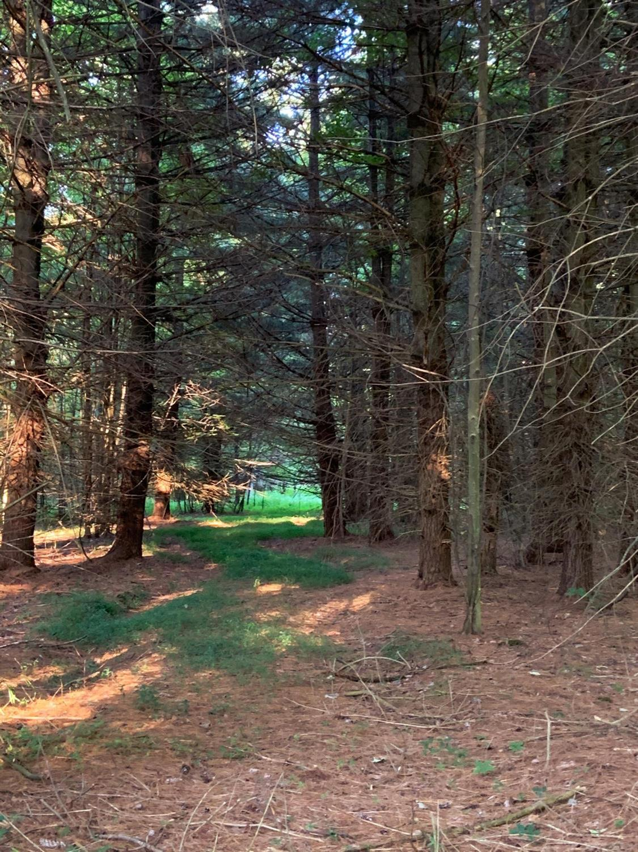 0 Union Hill Road Property Photo