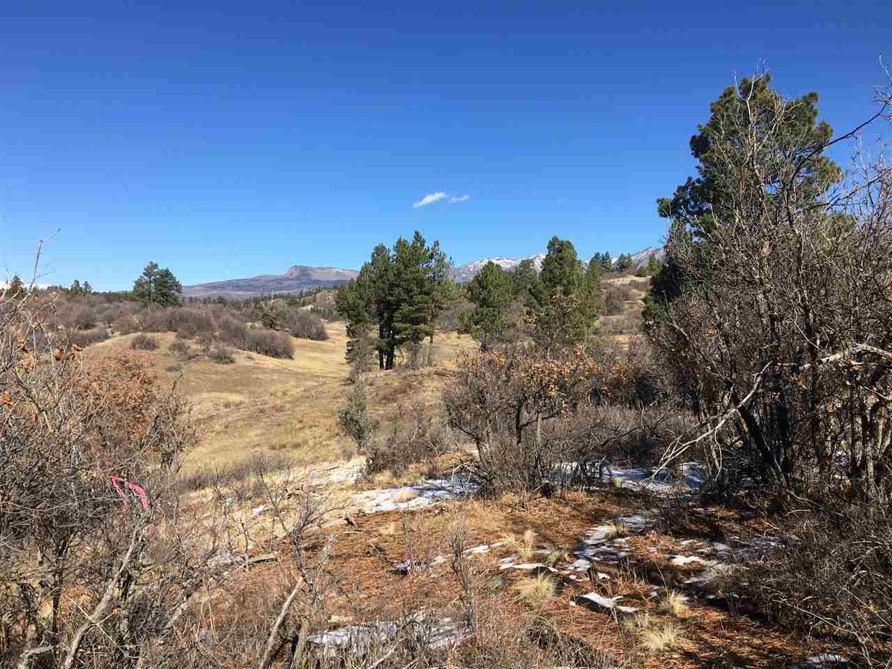 673 Spring Creek Cir Property Photo
