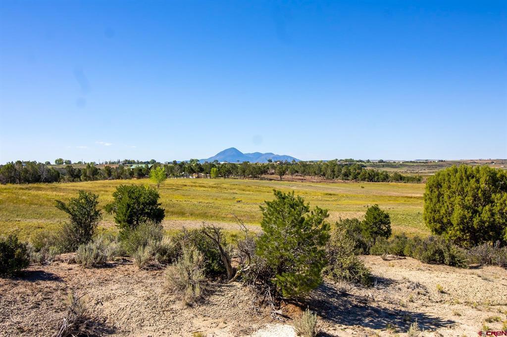 Tbd Highway 491 Property Photo
