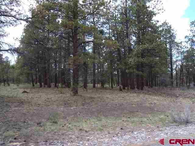 408 Bear Cub Drive Property Photo