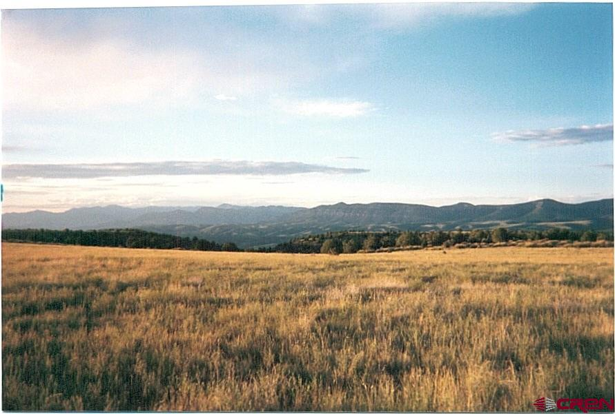 1221 Bear Mountain Road Property Photo