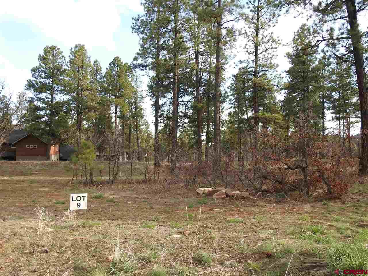 137 Canyon Pines (lot 9) Place Property Photo 1