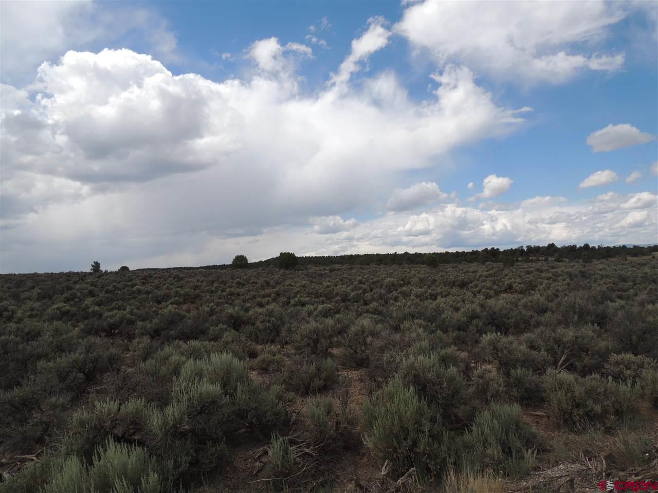 TBD Road 318 Property Photo 1
