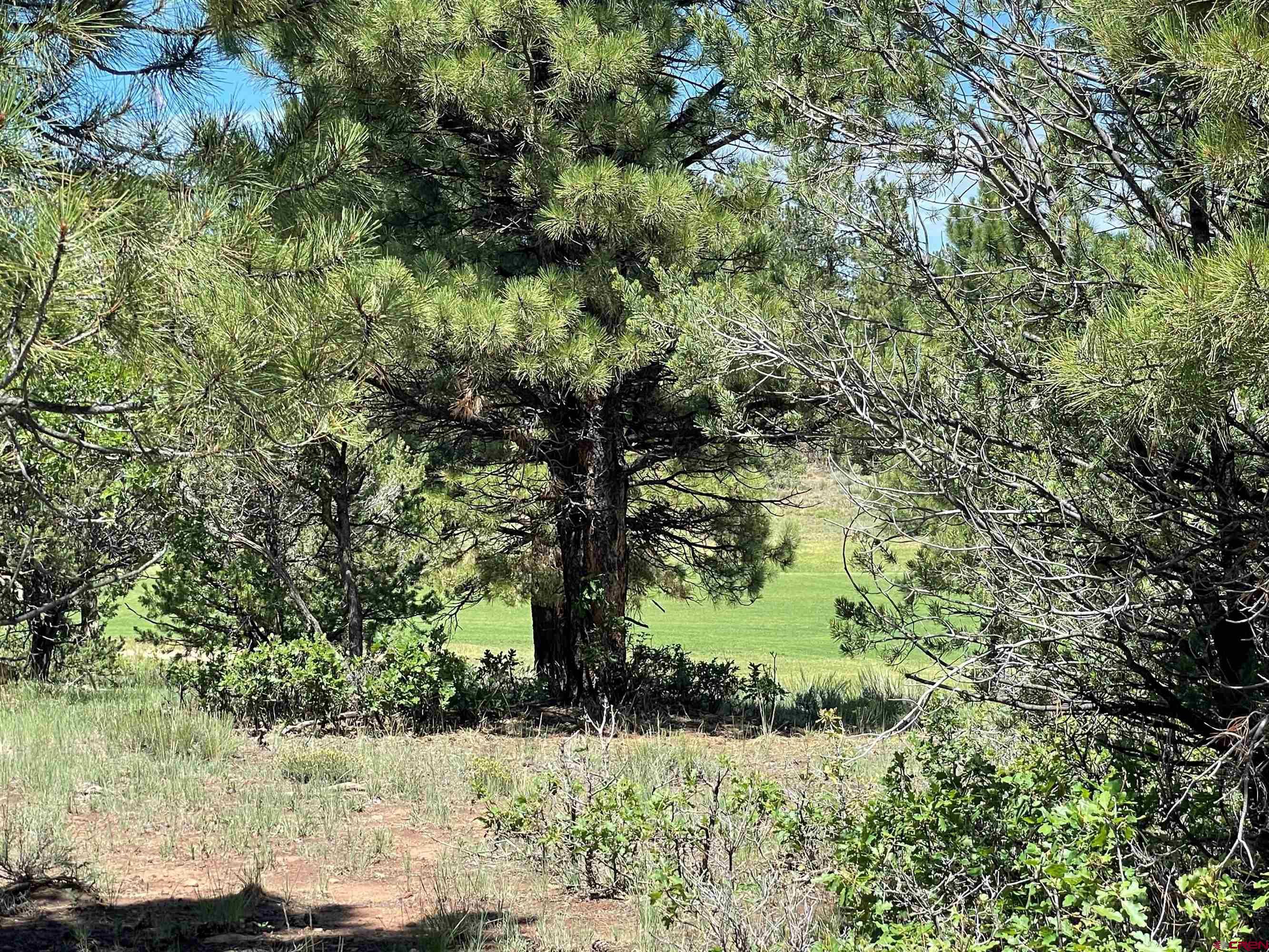 Tbd (lot 539) N Badger Trail Property Photo
