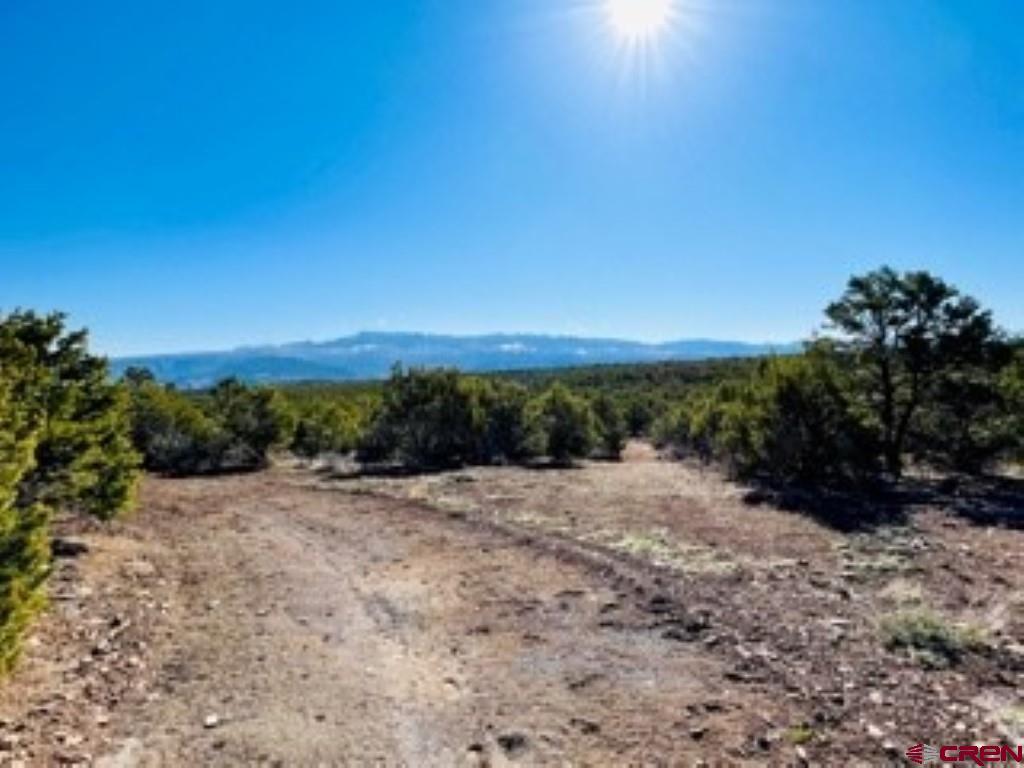 Tbd Pinion Ridge Road Property Photo
