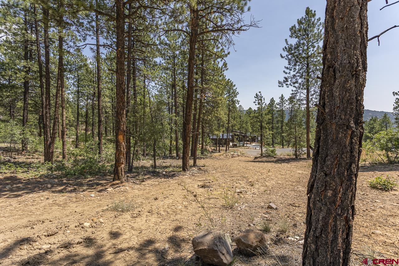 163 Boulder View Drive Property Photo 1