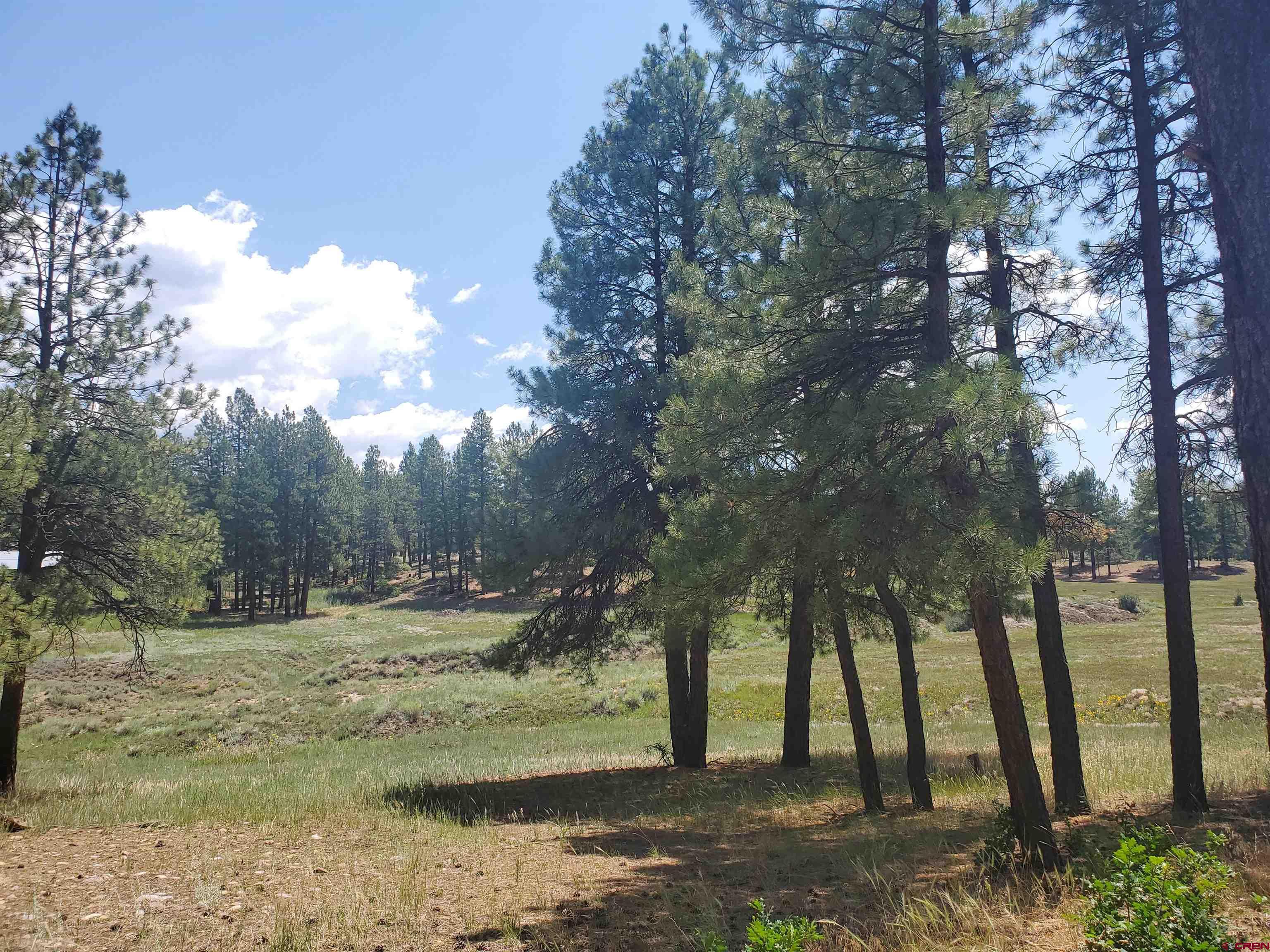 841 Beaver Creek Drive Property Photo 1