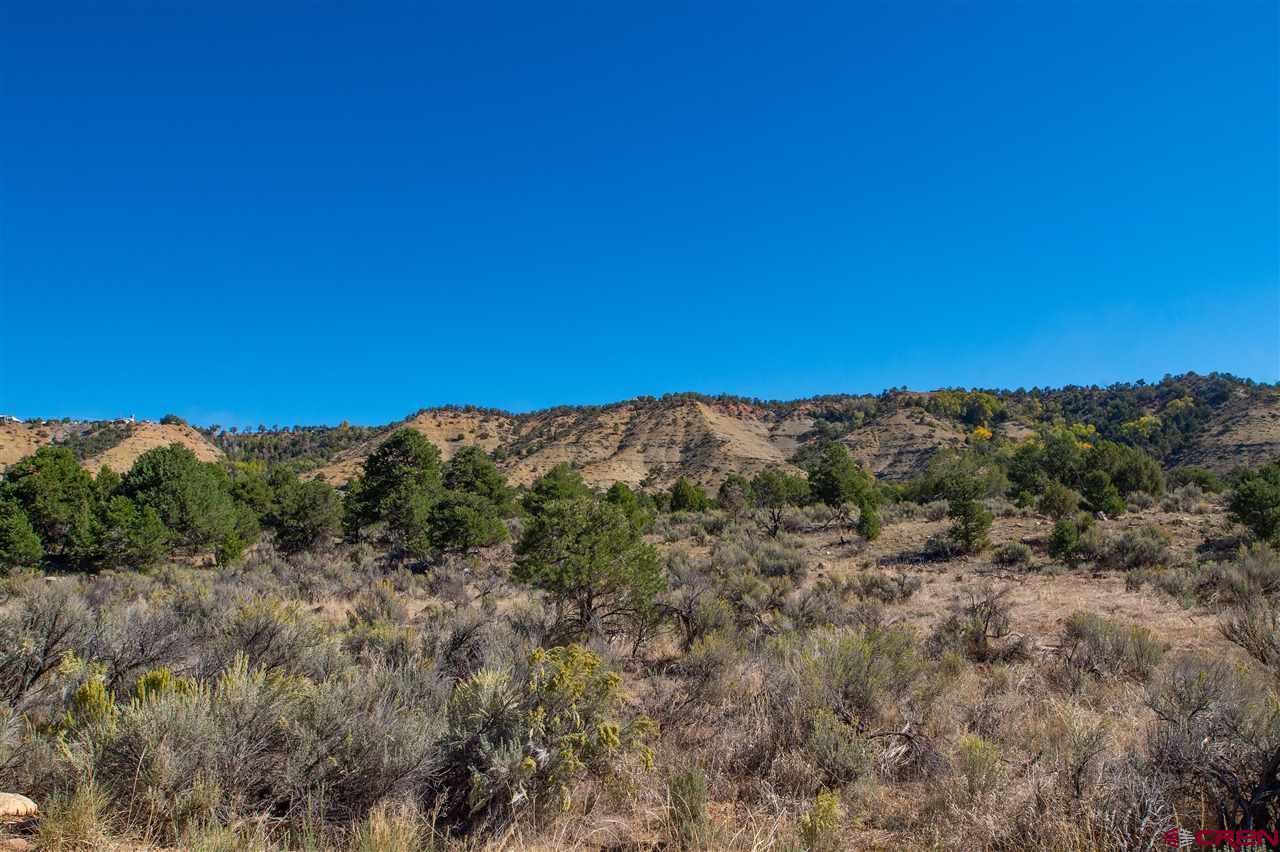 Tbd Cr 213 Or Jack Rabbit Trail Property Photo 5