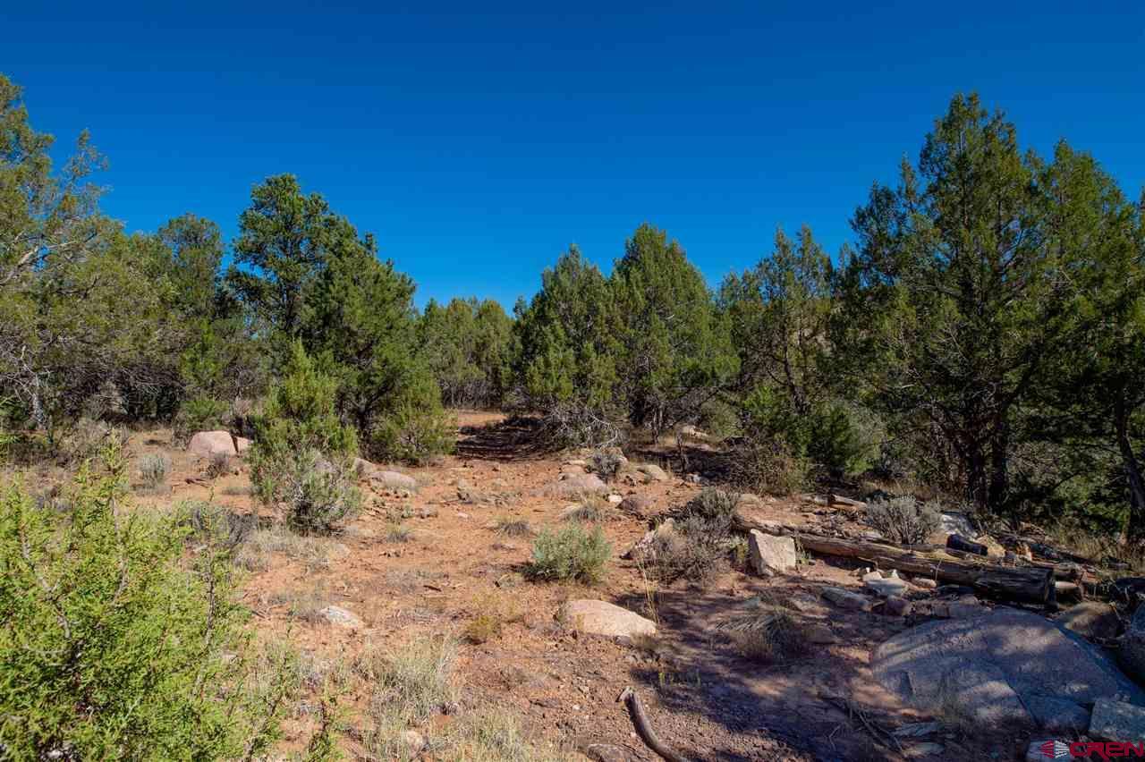 Tbd Cr 213 Or Jack Rabbit Trail Property Photo 6