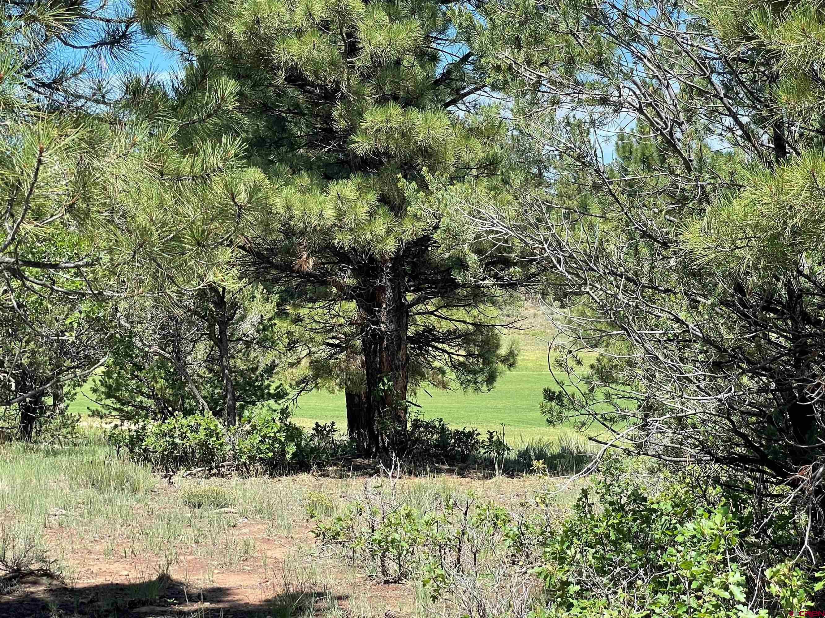Tbd (lot 540) N Badger Trail Property Photo