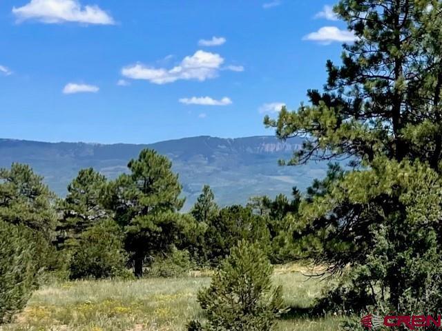 Tbd (lot 552) N Badger Trail Property Photo