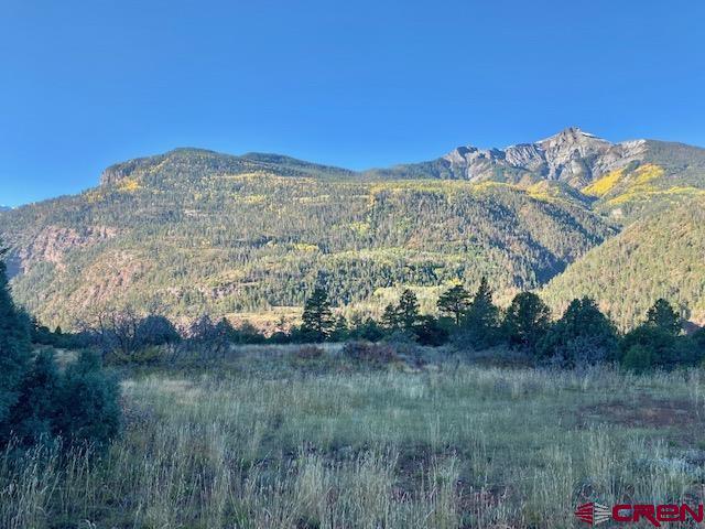 307 Gold Mountain Trail Property Photo