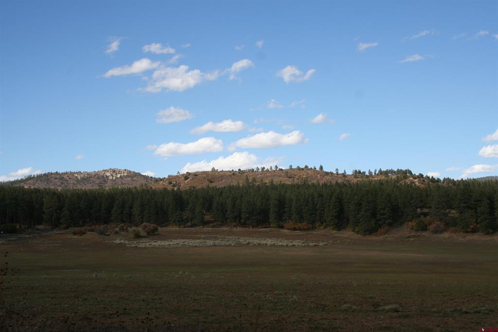 394 Hawks Meadow Drive Property Photo 1