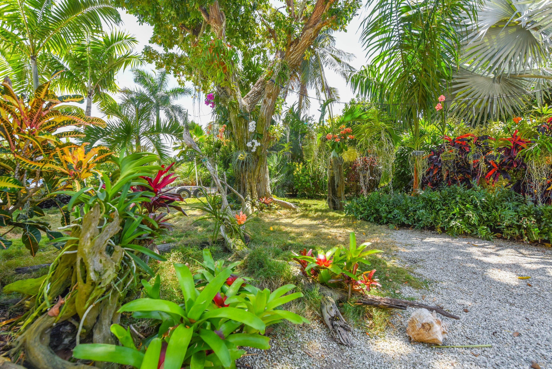 17195 Hibiscus Lane Property Photo 25