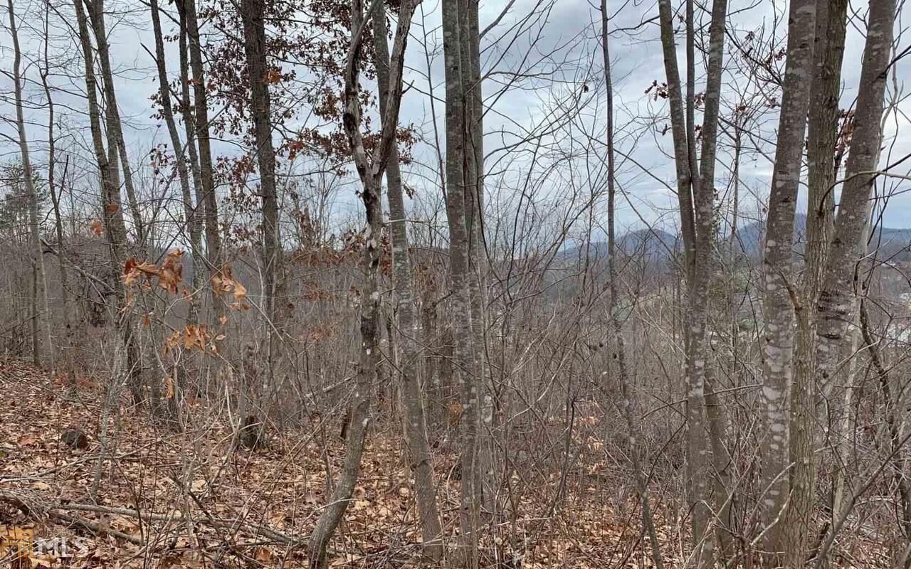 0 Ramey Mountain #lot 17 Property Photo