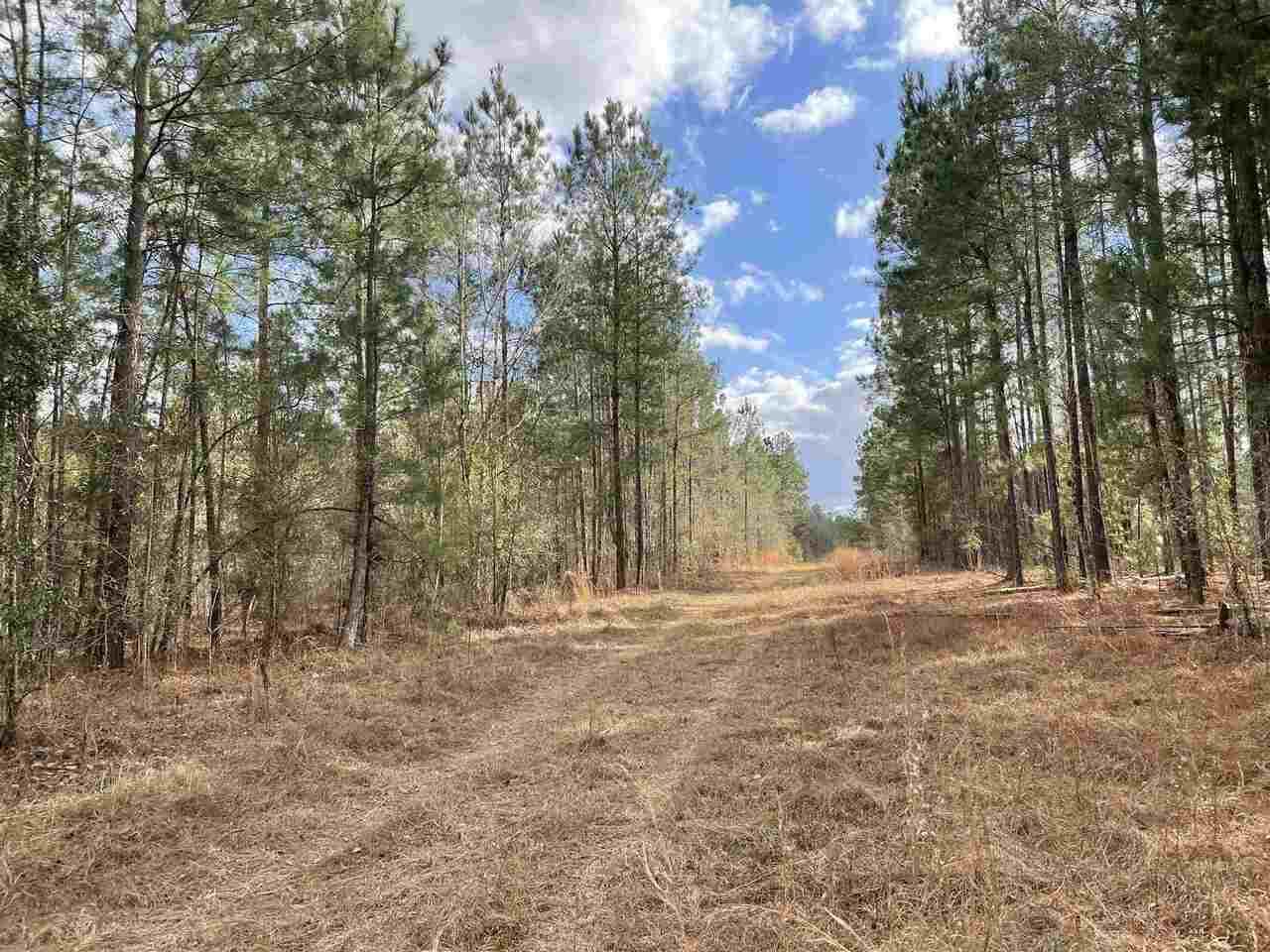 0 Highway 23 Property Photo
