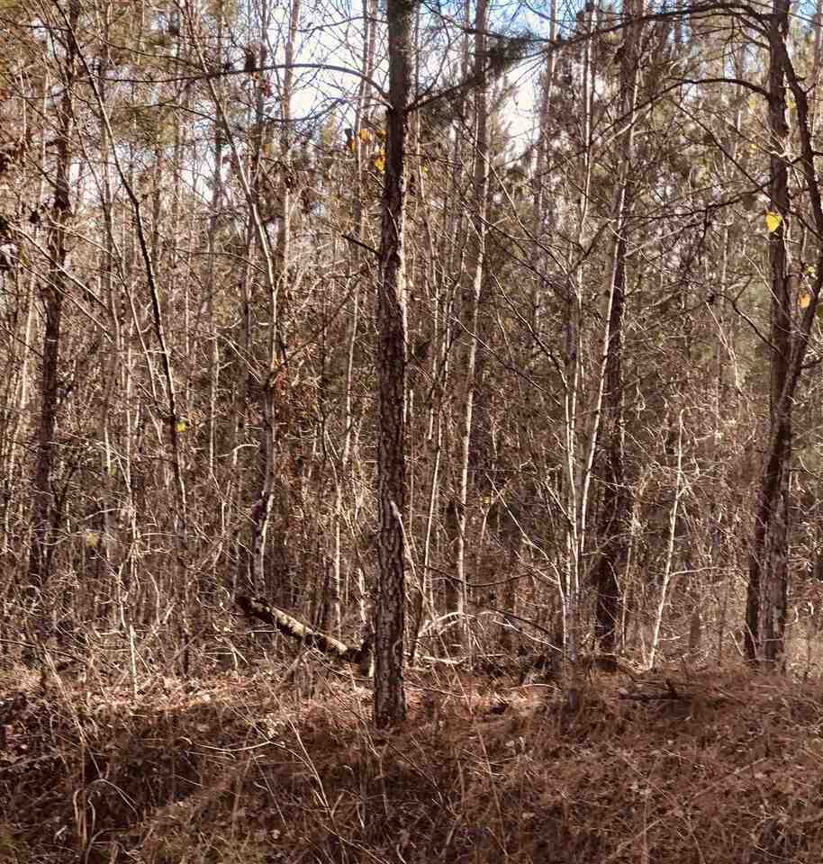 00 Highway 36 Property Photo 8