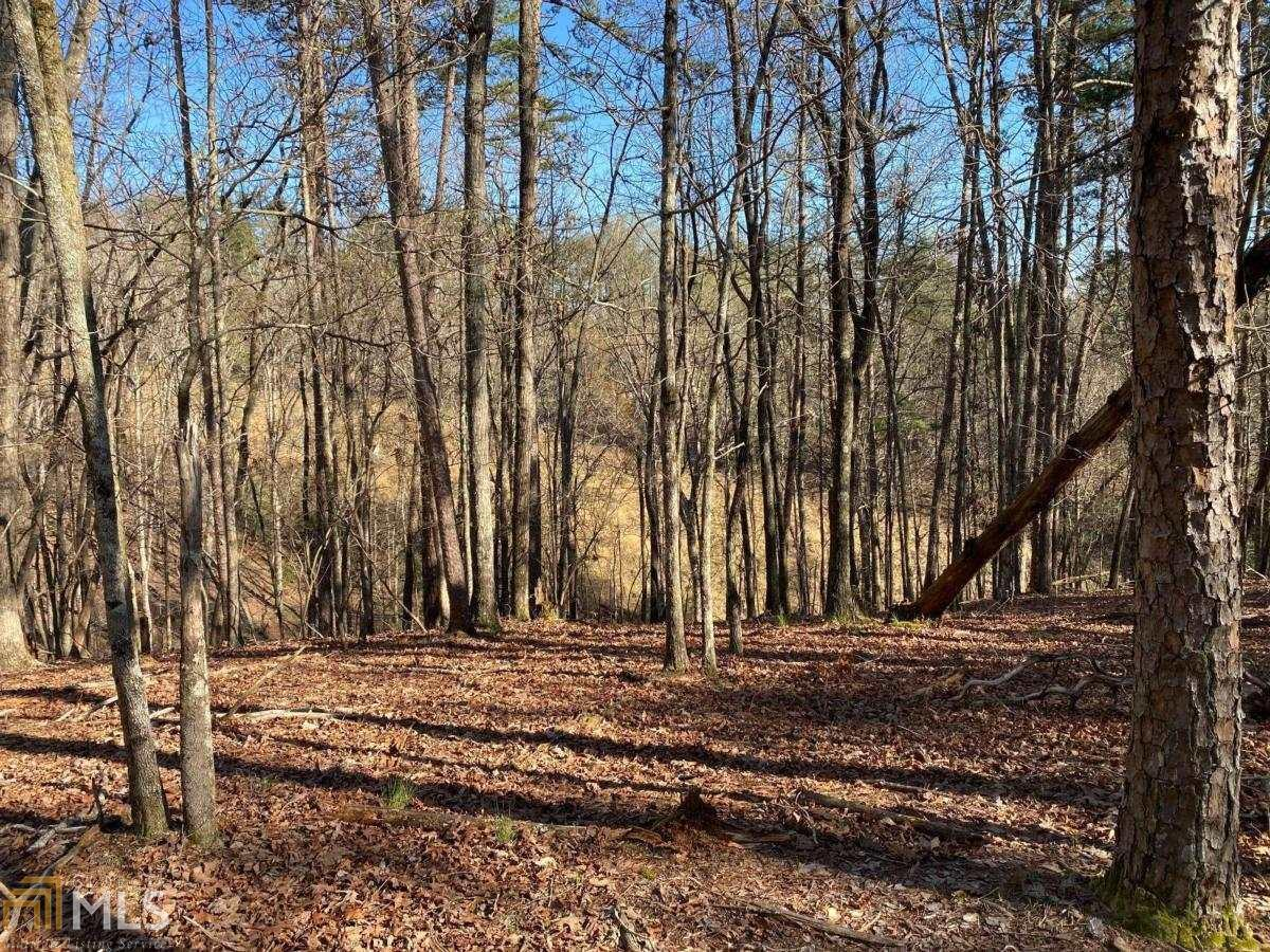 65 Placer Mining Road Property Photo