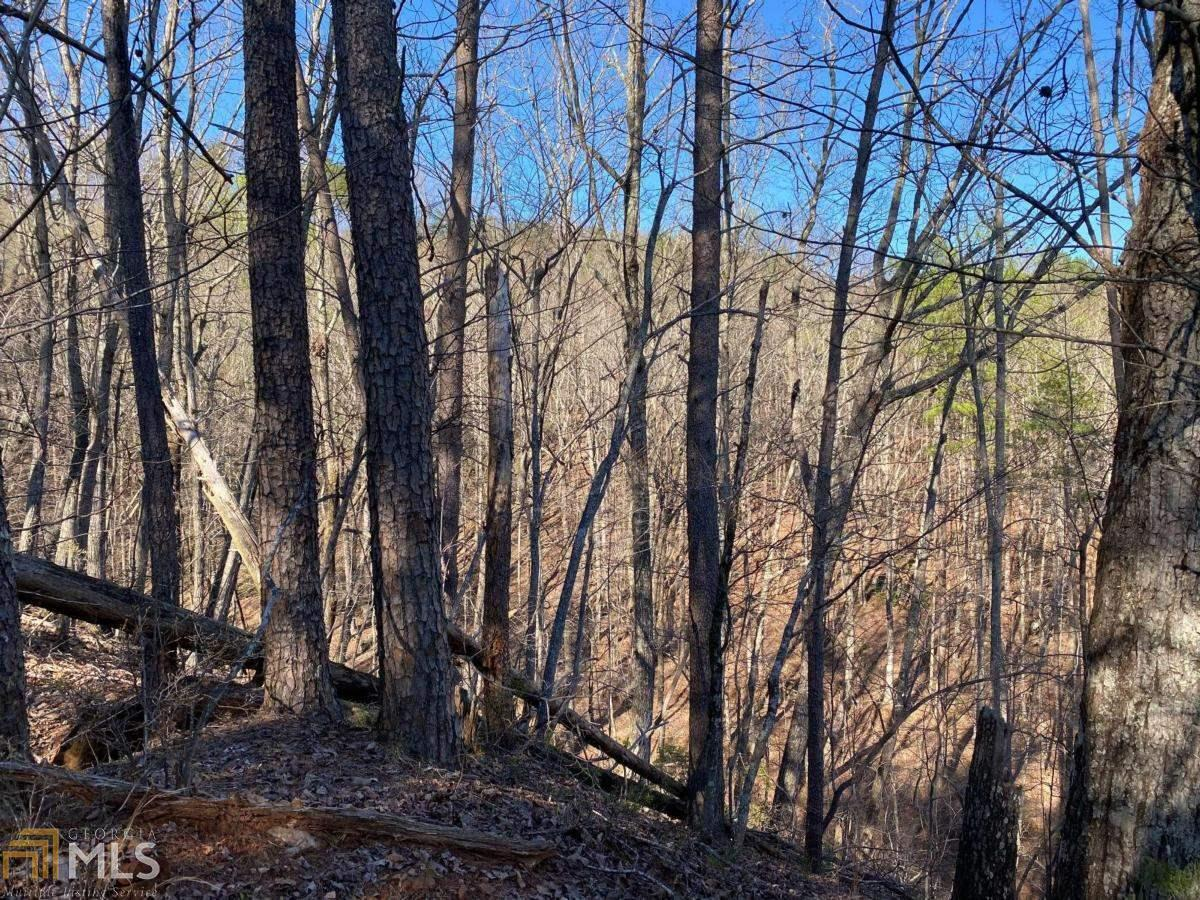 67 Placer Mining Road Property Photo