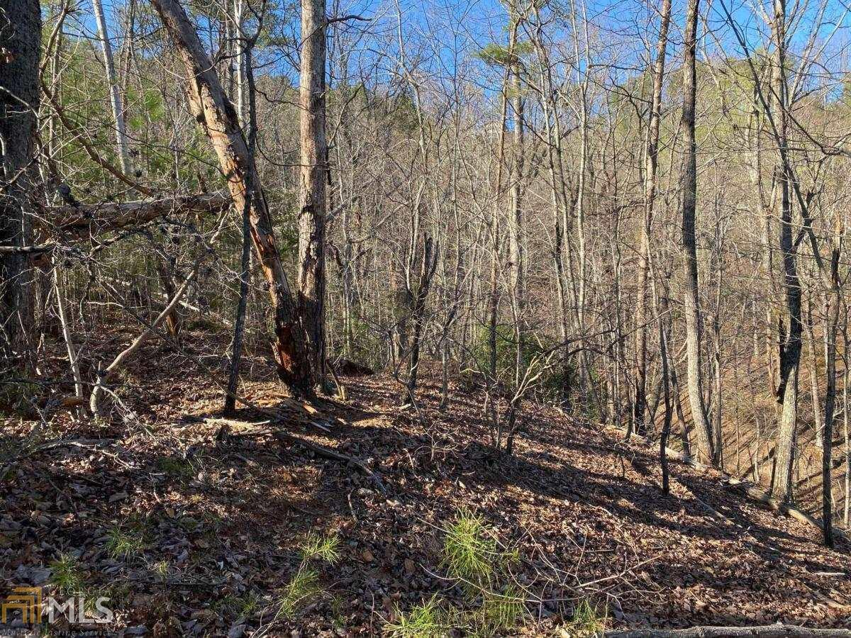 68 Placer Mining Road Property Photo