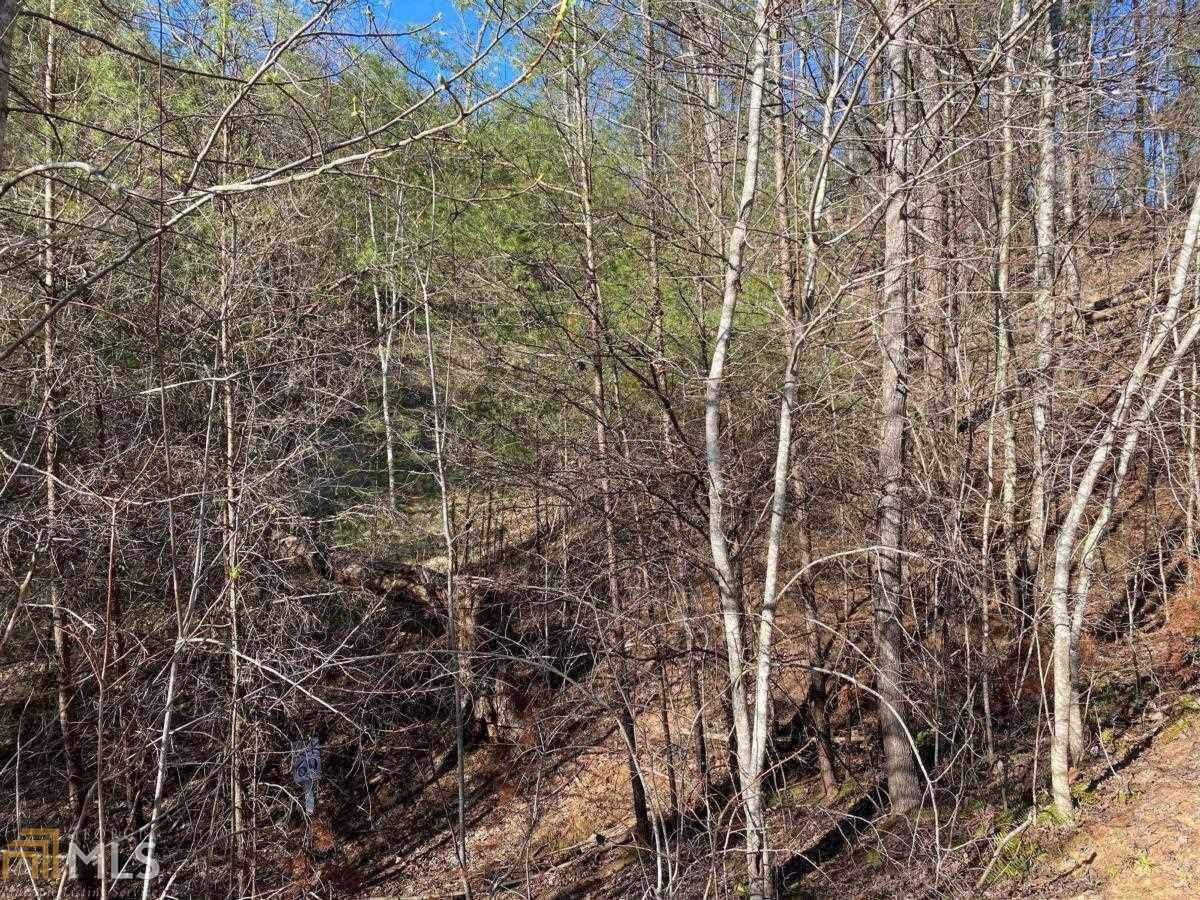 69 Placer Mining Road Property Photo