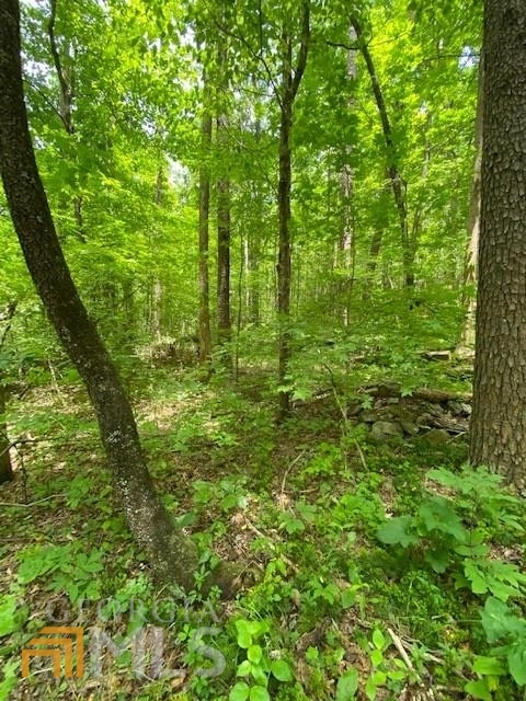 0 Wahoo Creek Road Property Photo